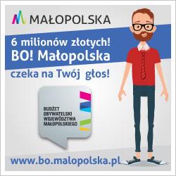 https://www.bo.malopolska.pl/index.php/glosowanie